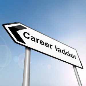 Career Success Programme